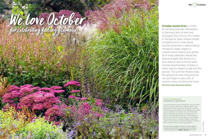 gardeners world October 2019